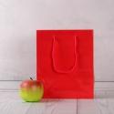 Пакет 19x23x9, красный, глянец